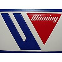 boxeo winning